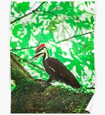 animal pt. 4 Poster