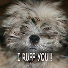 I ruff you , I love you by Sheila McCrea
