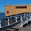 Pier at Queenscliff by brendanscully