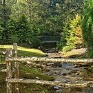 Little Bitty Bridge over the Little Bitty Stream by Chelei