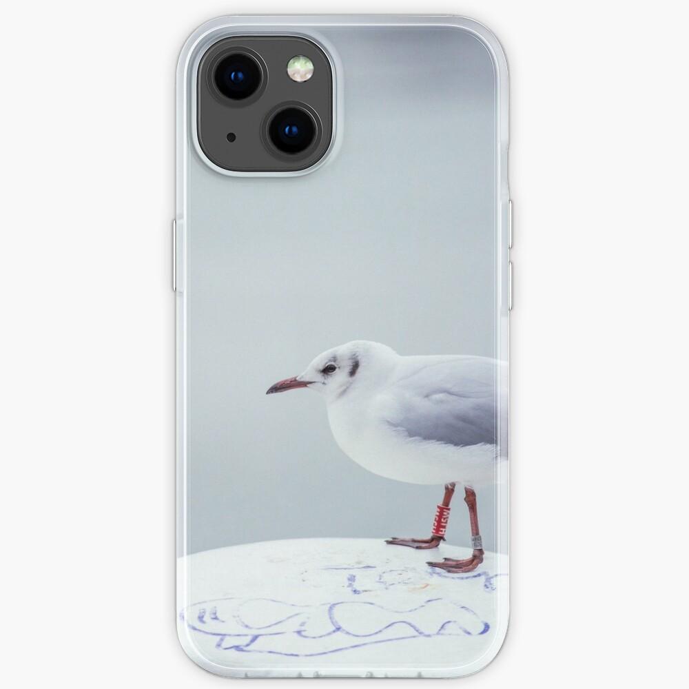 Seagull on bollard iPhone Case