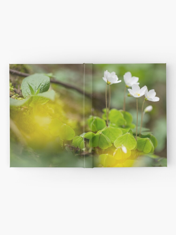 Alternate view of white clover in the forest Hardcover Journal