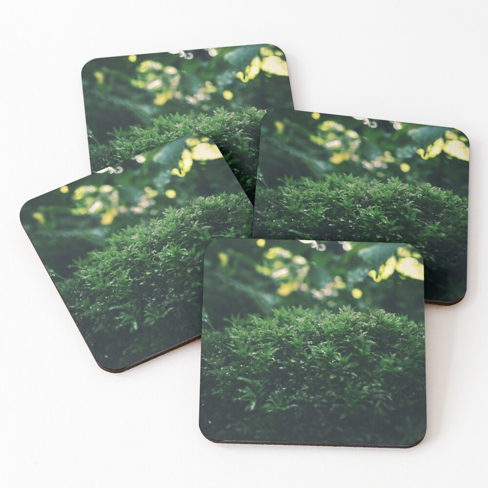 Moss pillow in the woods Coasters (Set of 4)