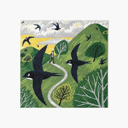 Swifts Art Board Print