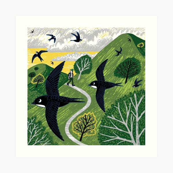 Swifts Art Print
