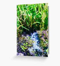 water source Greeting Card