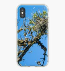 Treehuggers iPhone Case