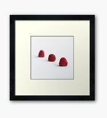 Three raspberries Framed Print