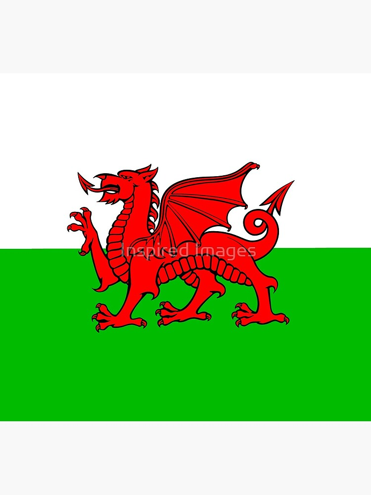 Wales-Flaggen-Waliser-Drache von ImageMonkey