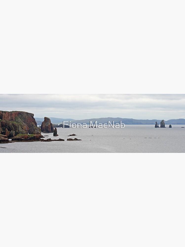Eshaness panorama by orcadia