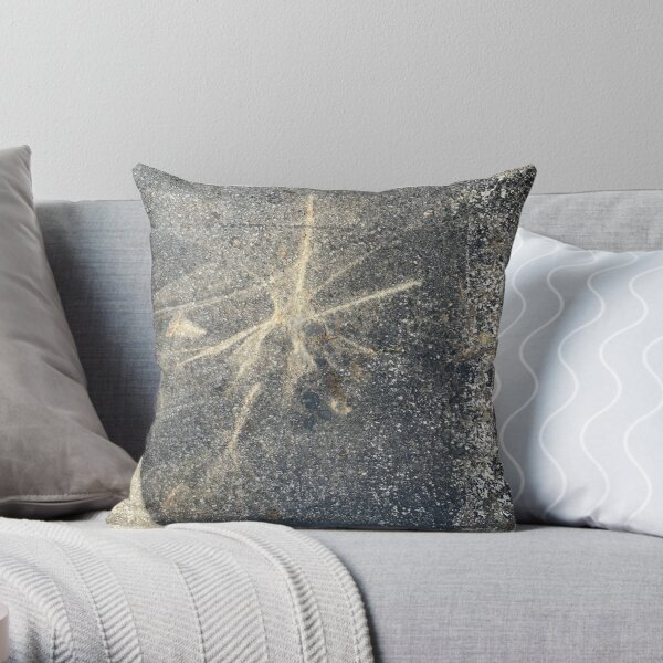 Light Reflection on Asphalt Throw Pillow