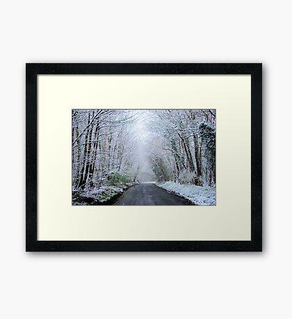 Slippery Framed Print
