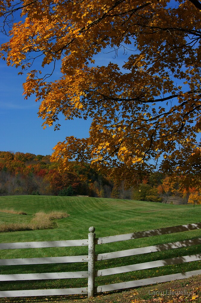 Fall........ the Best Season of All.. by Larry Llewellyn
