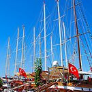 Masts by inglesina