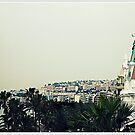 Hotel Negresco at Nice by Marcia Luly
