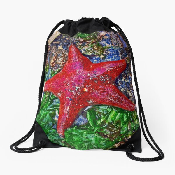 Starfish Drawstring Bag