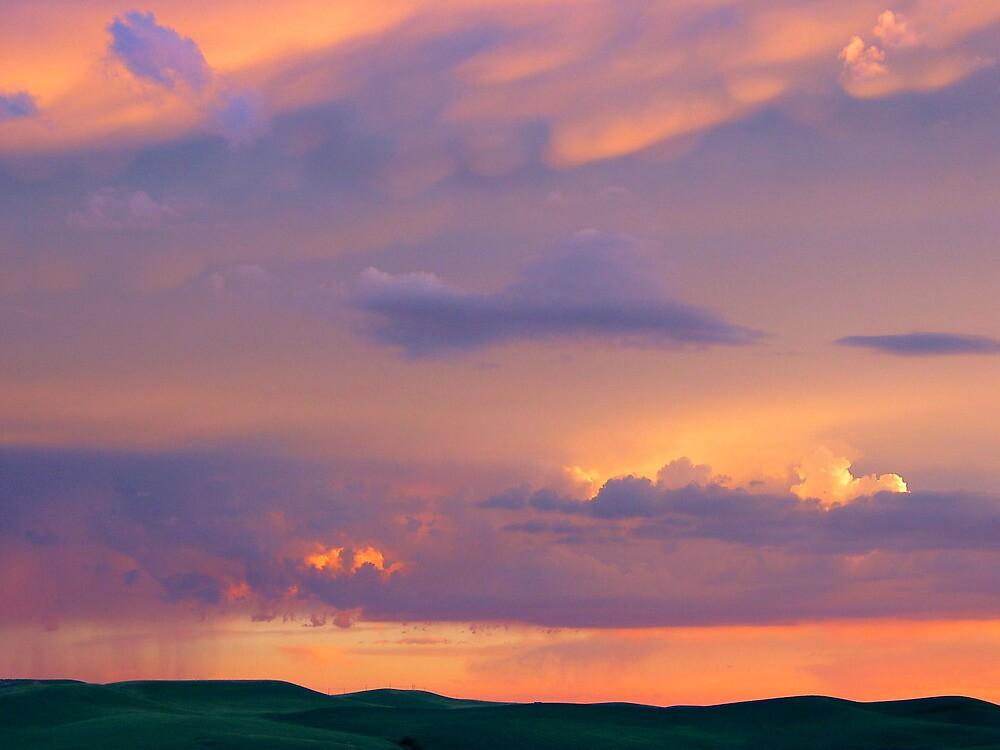 Painted Sky by Kathleen Jones