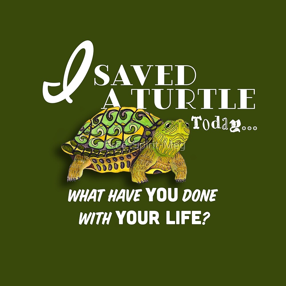 I Saved A Turtle Today... by Free-Spirit-Meg