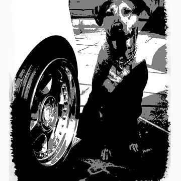 Got Dog Got Dish by Shnozzle