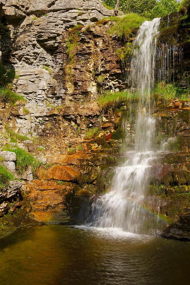 Buckden Falls II by Andrew Leighton