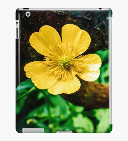 CORPUS [iPad cases/skins] iPad Case/Skin