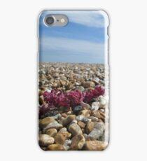 Dungeness Stone Beach iPhone Case/Skin