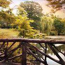 Central Park Pond by Jessica Jenney