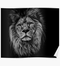 Póster León negro / blanco