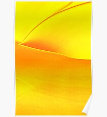 Study in Yellow: Agave Poster