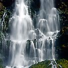 THOUSAND SPRINGS FALL by Charlene Aycock