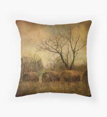 drapé dans les ors de l'automne... Throw Pillow