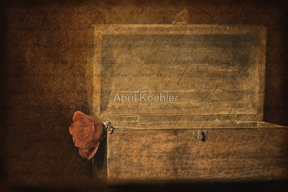 The Box by April Koehler