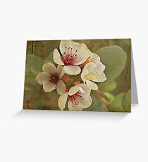 Textured Flowers Greeting Card