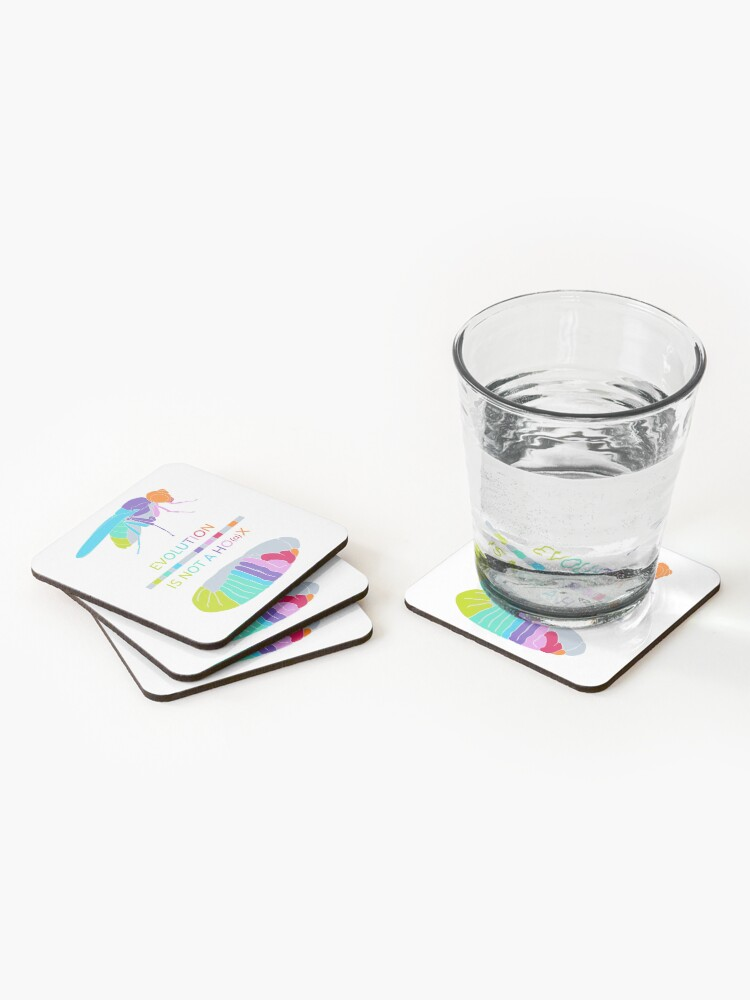 Alternate view of Drosophila Hox Genes - Evolution is not a Ho(a)x Coasters (Set of 4)