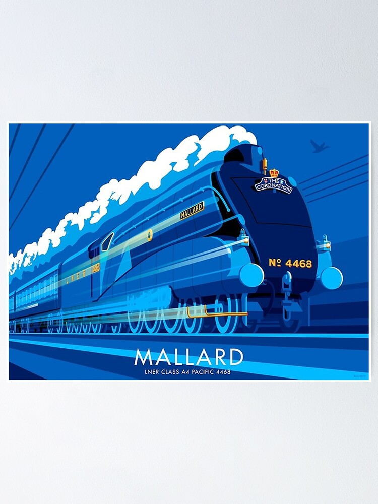 Alternate view of Mallard     Poster