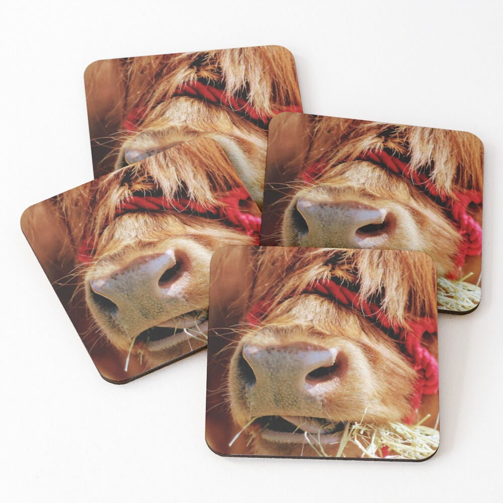 Chewing on hay Coasters (Set of 4)