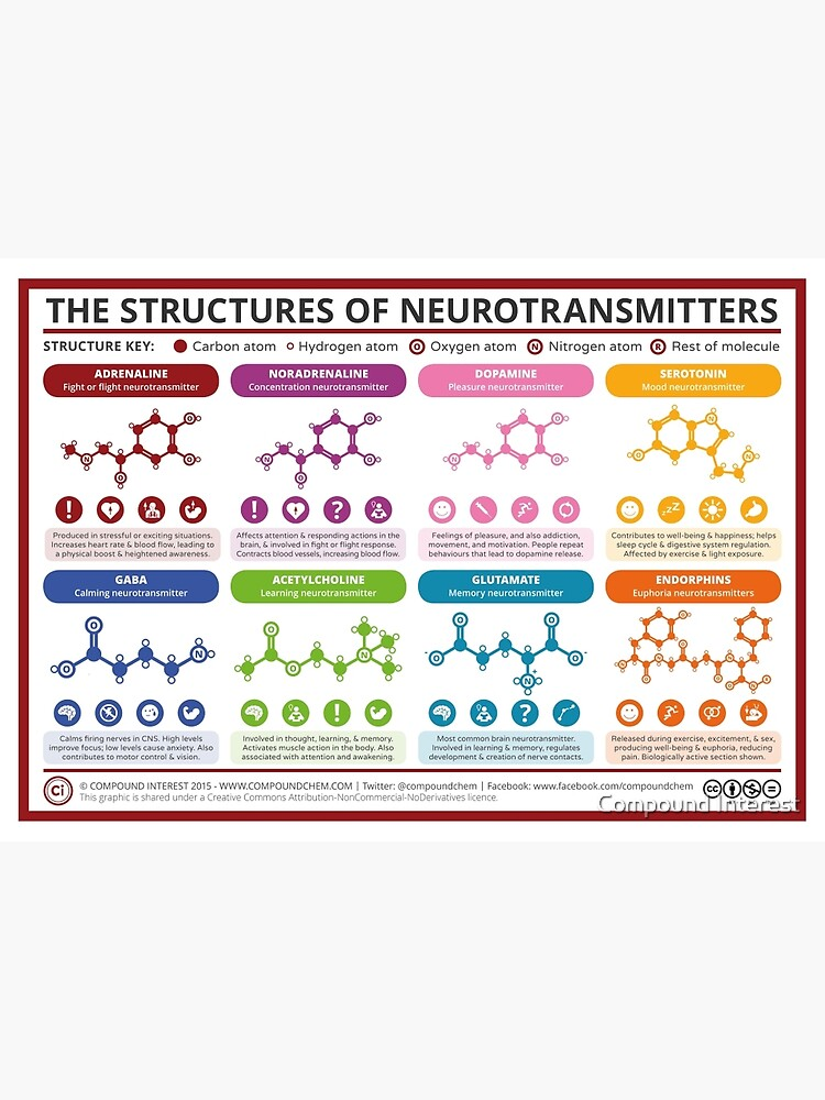 Chemical Structures of Neurotransmitters by compoundchem
