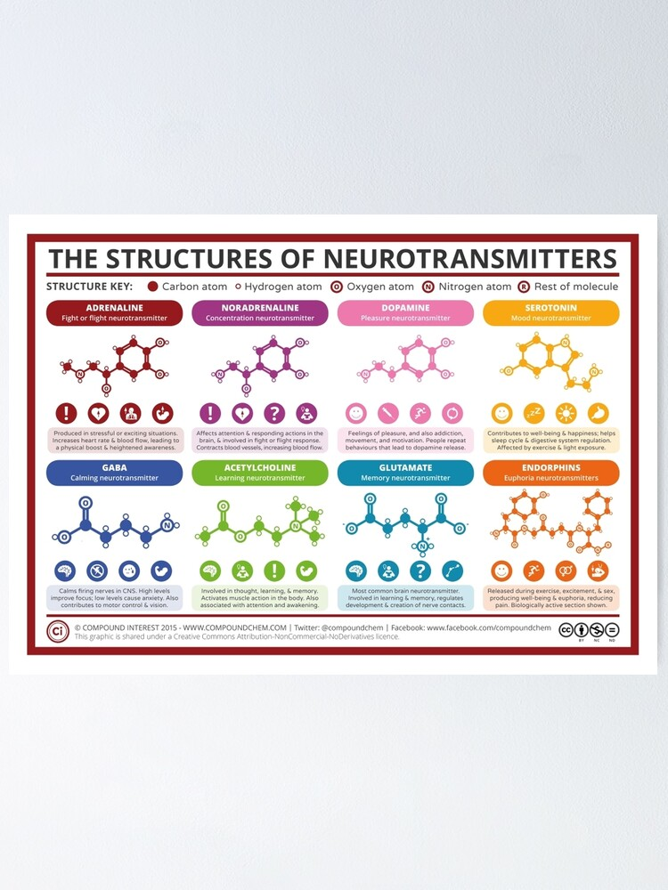 Alternate view of Chemical Structures of Neurotransmitters Poster