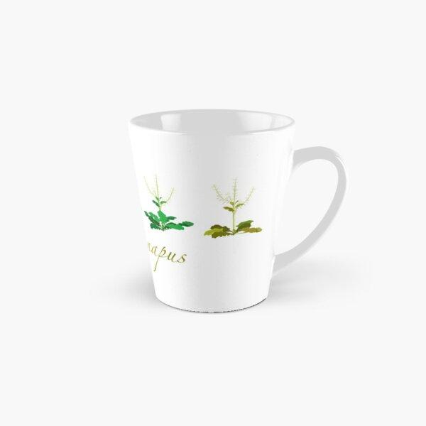 Brassica napus - Canola plant development  Tall Mug