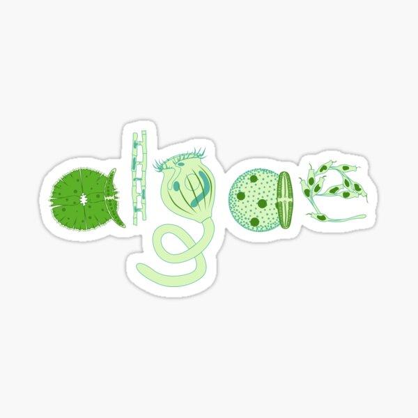 Literate Microscopic Algae Sticker