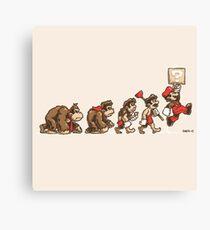 8 Bit Evolution Canvas Print