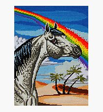 Arabian Needlepoint Photographic Print