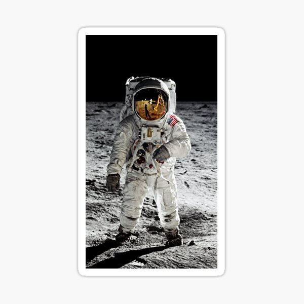 Aldrin on the Moon Sticker
