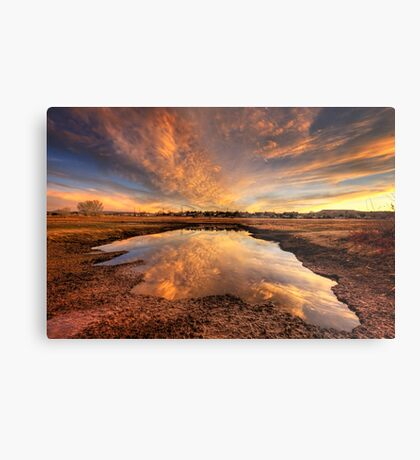 Now That's A Puddle!* Metal Print
