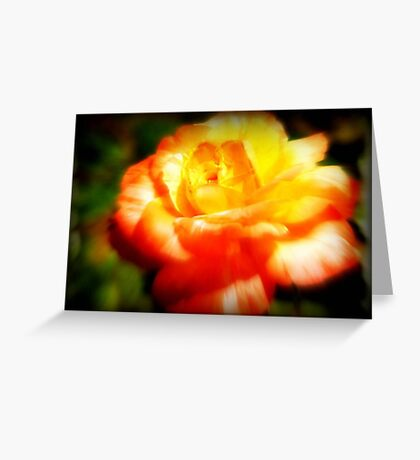 The Last Rose Stands Alone ©  Greeting Card