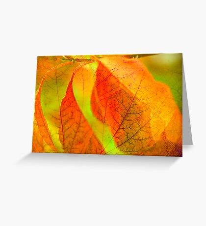 Autumn map Greeting Card