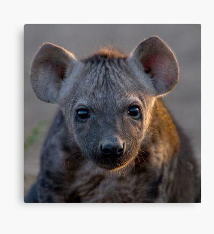 Hyena Cub Canvas Print