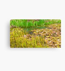 Floating Lillie leaves Canvas Print