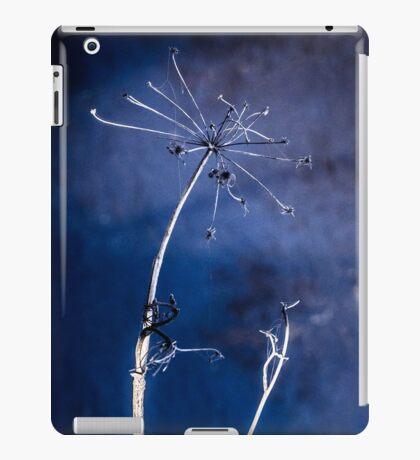 HOLLOW [iPad cases/skins] iPad Case/Skin