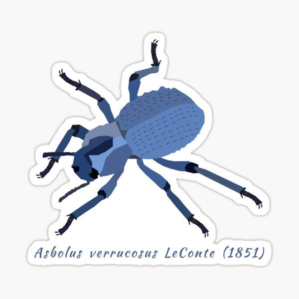 Coléoptère feignant bleu, Asbolus verrucosus, portrait Sticker